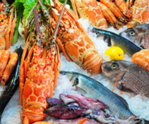 seafood-master-franchise-restaurant-for-sale.jpg